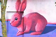 Bunny (Rico the noob) Tags: dof 50mmf12 50mm 2017 art comerge street d500 travel city outdoor published urban urbanexploration estonia