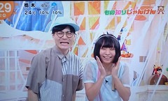 にゃんこスター 画像5