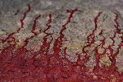 Life Blood (LookSharpImages) Tags: lime oregon limeoregon abandoned abandonedspaces