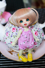Doll Meeting - Tea Party (Ylang Garden) Tags: meeting doll tiny fairyland cocoriang tinydoll teaparty