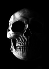 Bone Head (darrenball189) Tags: isolated skull black scull background white death skeleton dead human bone head halloween face evil horror retro scary anatomy dark old pirate teeth jaw spooky monochrome sceleton