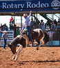 750_3470.jpg (michaelwstephens) Tags: bronc rodeo rodeoaustralia mountisarotaryrodeo mountisa thisisqueensland isarodeo outbackqueensland cowboy