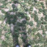 Pittsburgh's Solar Eclipse: Dim Shadow thumbnail