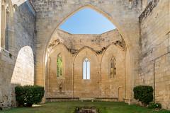 IMG_6175.jpg (Bri74) Tags: architecture couventdescordeliers entredeuxmers france saintemilion