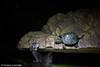 IMG_0697 (10Rosso) Tags: acqua acquario genova pesci pesce mare acquariodigenova aquarium genovaacquarium