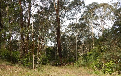 158A Oxley Drive, Mittagong NSW 2575