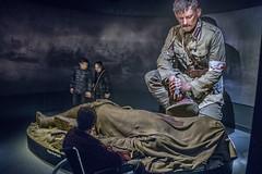 The war to end all wars -NOT (Ian@NZFlickr) Tags: te papa gallipolli weta studios models lotr wellington nz ww1 anzac