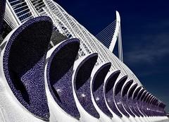 Umbracle (@WineAlchemy1) Tags: umbracle calatrava spain architecture valència neofuturism 12treasuresofspain jardidelturia city cityofartsandsciences ciutatdelesartsilesciències ciudaddelasartesylasciencias
