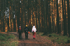 Before Walpurgis Night (Toffee Maky) Tags: toffeemaky analogue analog analogslr slr film 35mm pentaxk1000 smcpentaxm1250mm porstcolorx200 spring walpurgis night forest evening expired people grain nature road sun czechcountryside