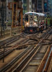 Raise a Little El (Carl's Captures) Tags: cta chicagotransitauthority ltrain eltrain elevatedtrain railroadtracks crossovertracks signals chicagoillinois cityofchicago cookcounty theloop thewindycity chitown urban cityscape selectivefocus tiltshift miniatureeffect toytrain coaches carriages cars masstransit publictransportation switches downtown architecture crowded rightofway july summer landscape adamswabashstation patterns nikond5100 tamron18270 lightroom5 photoshopbyfehlfarben thanksbinexoxo