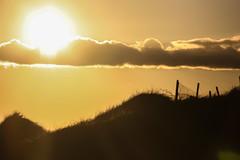 In the spotlight (A Costigan) Tags: fencefriday fence fanore clare ireland irish dunes sunlight canon eos