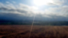 Morning (EmperorNorton47) Tags: cityofirvineopenspacedistrict irvine quailhill california photo digital summer slopes hill morning sunray grass meadow
