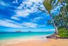 Lanikai Beach Hawaii (explore) (meeyak) Tags: oahu hawaii lanikai lanikaibeach kailua paradise island tropical usa meeyak nikon d800 travel vacation outdoors adventure ocean seascape landscape blue aqua summer warm hot relaxing