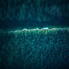 Tama Wave 🌊 (alexkess) Tags: