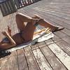 Feet and legs (Viaggi & Intemperie) Tags: feet toering legs bikini girl