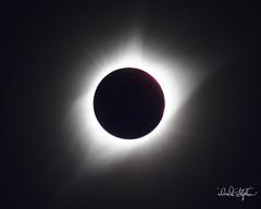 _N7A9942_DxO (dcstep) Tags: mitchell nebraska unitedstates us induro indurotripod solarfilter solareclipse totalsolareclipse canon5dmkiv ef500mmf4lisii ef14xtciii allrightsreserved copyright2017davidcstephens dxoopticspro1142 spectrumtelescopeglasssolarfilterst675g