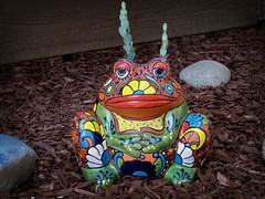 "Meet El Diablo, newcomer to our front ""garden"", a Little Thing that makes me smile.... (Bennilover) Tags: frogs frog mexico artwork ceramics planters pots succulents color lipstick colorful gardens eldiablo devil decorations pottery mexican"