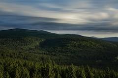 (desomnis) Tags: longexposure forest wood woodland woods nature le sky clouds trees mühlviertel austria österreich oberösterreich upperaustria landscape canon5dmarkiv canon 5d canon5d desomnis böhmerwald bohemianforest moldaublick