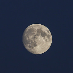 August evening moon (nican45) Tags: 05082017 2017 5august2017 70200 70200mm august canon dslr ef70200mmf28lisusm eos70d hobmoor sigma york evening moon sky