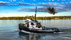 Little plume of black smoke (Christie : Colour & Light Collection) Tags: boat tugboat fraserriver river tug workingboat water sky bc canada canadian nikon clouds seacaplll tires blacksmoke plumeofsmoke newwestminster surrey