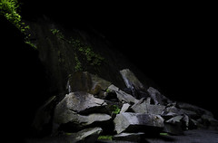 Embracing the Darkness (pedalpusher139) Tags: rocks plants light darkness lowkey lakedistrict