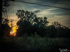 255/365 - Sunrise