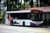 SBS Transit Scania K230UB Gemilang (nighteye) Tags: sbstransit 新捷运 scania k230ub gemilangcoachworks eurov sbs8752l service13 kelloggs specialk singapore bus