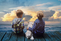Childhood (sophie_merlo) Tags: sea children kids cute future brothers boys blue sky dog chihuahua pet family childhood youth life unknown portrait familyportrait horizon whimsical