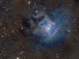 NGC 7023 - A focus on the Iris