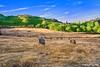 """""""chi semina buon grano, ha poi buon pane"""" (Domenico F. Greco photo) Tags: calabria cosenza grano fieno balledifieno rotoli campodigrano panorami landscape paesaggi platinumheartaward"""