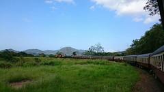 2015-11-26 01.23.34 (ashleyfmiller) Tags: cairns australia train mountains grass