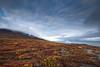 Diskoland (davebrosha) Tags: davebroshaphotography qeqertarsuaq arctic autumn disko greenland island landscape nature