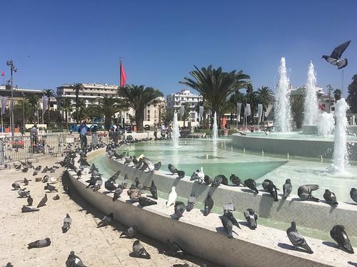 La place Mohammed V et ses pigeons