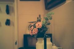 (nihilnovum) Tags: analoga analogue 35mm zenit kodak film pizarnik rosas flowers