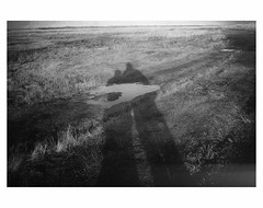 """(bruXella & bruXellius) Tags: netherlands niederlande paysbas leplatpays leicax1 bnw blackwhite monochrome dünen deduinen dunes """"de slufter"""""""