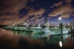 Marina (karinavera) Tags: marina ilcea7m2 longexposure hammockpark night miami boat yacht batis ilce7rm2 sonya7r2 stars florida