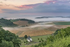 *Die Kapelle im Tal* (Albert Wirtz @ Landscape and Nature Photography) Tags: albertwirtz fintenkapelle finten wittlich bergweiler valleyofwittlich wittlichersenke rheinlandpfalz rhinelandpalatinate eifel südeifel moseleifel eifelmosel wandern hiking eifelsteig fog mist niebla bruma brume brouillard nebbia dunst morgenstimmung morningmood morgennebel morningmist earlymorninglight deutschland germany kapelle chapel fintenchapel getreidefelder clouds wolken morgenrot wald forest nikon d810 landscape landschaft natur nature natura paesaggi landscapedreams valleyofthemorningmist taldermorgennebel