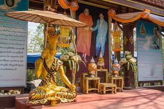 mae fah luang - thailande 42