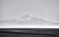 mAJESTY iN mORNING mIST (wNG555) Tags: 2014 canada britishcolumbia vancouver mountbaker bw victoria fav25 fav50