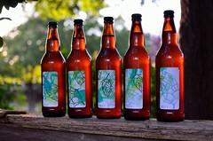 We're a Hoppy Family (nra45acp) Tags: homebrew beergeek hops blockprint