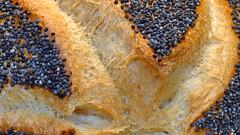 Mohnbrötchen   -   Poppy seed bun (karinrogmann) Tags: macromondays august21 bread brot poppyseedbun mohnbrötchen panino semidipapavero nikonmicro105mmf28