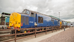 37422 Crewe Gresty Bridge 12082017 (TheSilkmoth) Tags: 37422 class37 tractor drs directrailservices cheshirerailways depot crewe grestyroad grestybridge plainbluelivery