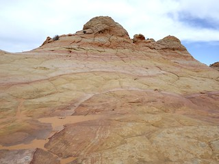 south coyote buttes cottonwood cove