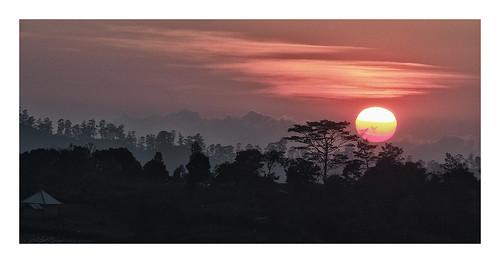 Bali : near Bedugul