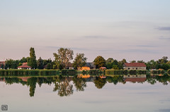 Palic reflection (D.Slaven) Tags: palic reflection landscape mirror krvavojezero lake naturallight nikond7000 nikkor50mmf20ai subotica