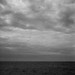 Silent sea after the storm (Rosenthal Photography) Tags: dänemark ff120 6x6 analog mittelformat urlaub bnw asa400 schwarzweiss ilfordhp5 20170709 bw nordsee zeissikonnettar51816 sea northernsea beach blackandwhite zeiss ikon nettar ilford hp5 hp5plus danmark epson v800 nature landscape seascape denmark