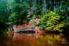 IMG_3021 (denjah) Tags: latvia gauja rafting autumn river