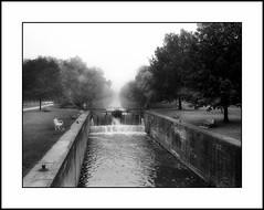 Foggy Morning along the Hennepin (JourneysEnd1750) Tags: film analog 35mmfilm rangefinder canon canonet ql17 hennepincanal geneseo henrycounty quadcities fujifilm acros