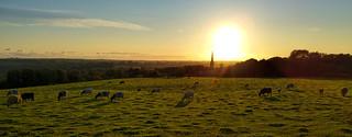 Parbold Sunset 1