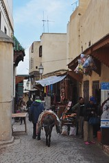 Quand les voitures ne passent plus, médine de Fès el Bali, Fès, Maroc. (byb64) Tags: fès fez فاس ⴼⴰⵙ fas fèsmeknès maroc morocco marruecos المغرب ⵍⵎⵖⵔⵉⴱ royaumedumaroc marokko marocco médina medina vieilleville oldtown cascohistorico altstadt fèselbali unesco unescoworldheritagesite toits techos ville city citta ciudad town stadt paysage paisaje paesaggio landscape landschaft vue view vista veduta rue calle street strasse via âne donkey asino